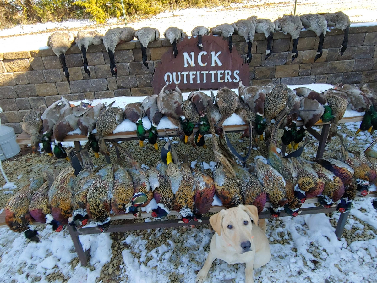 Combo Waterfowl & Pheasant Hunts
