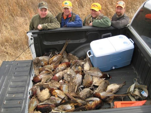 Guided Pheasant Hunting Rates